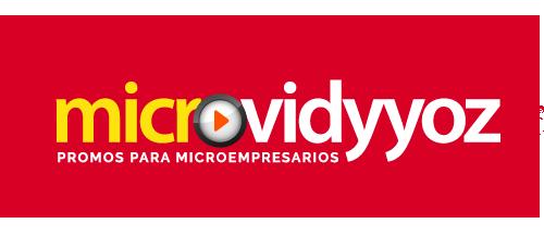 MicroViddyoz